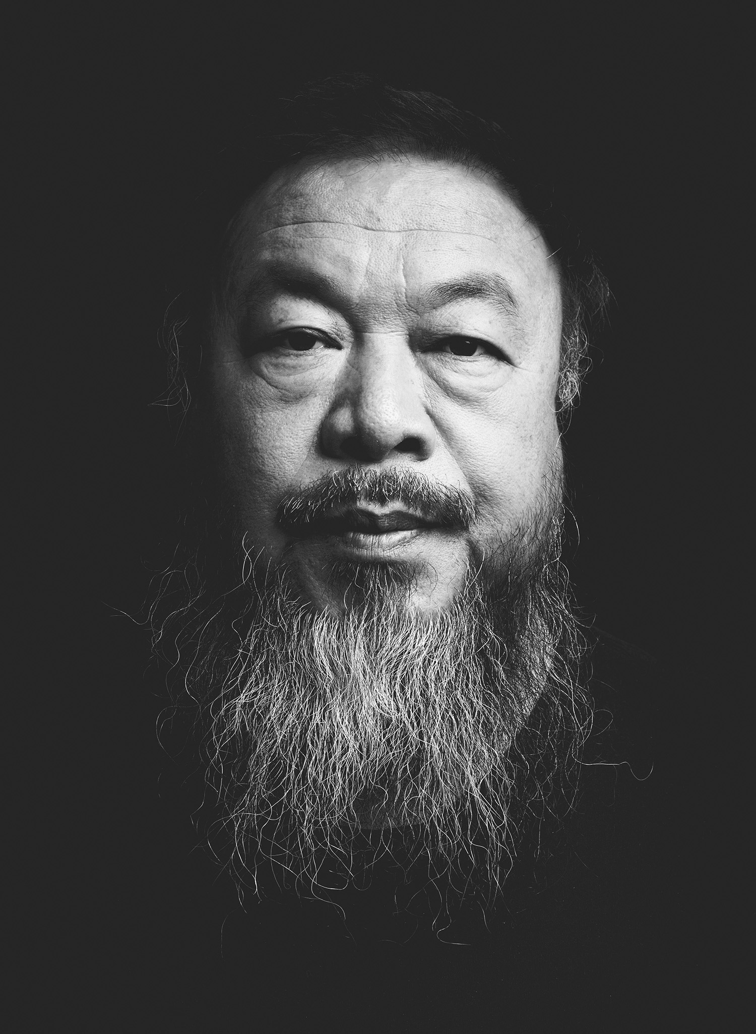 Iris covet book ai weiwei category icon floridaeventfo Image collections